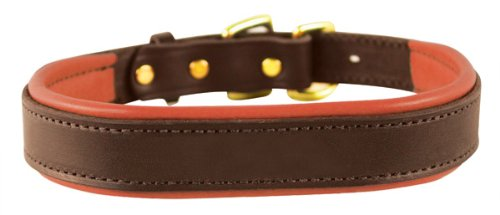 Perri's Leather Padded Leather Dog Collar, X-Small, Havana with -