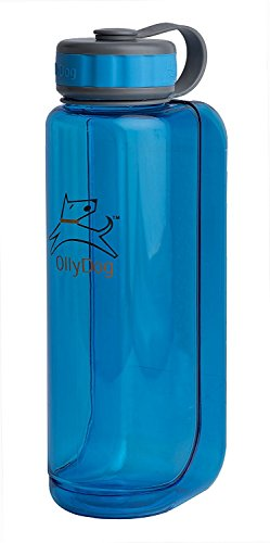 OllyDog 1030-1000-21 Ocean OllyBottle Water Bottle, 1 L