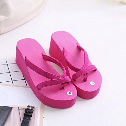 Slipper 10 Indoor Flip Summer Shoes Sale Flops Outdoor Hot Women's Pink Coromose US Hot Beach Sandals 5 ICq61