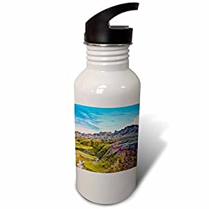 3dRose Danita Delimont - Mountains - Colored Hills And Valleys, Badlands NP, South Dakota, Usa - Flip Straw 21oz Water Bottle (wb_279431_2)