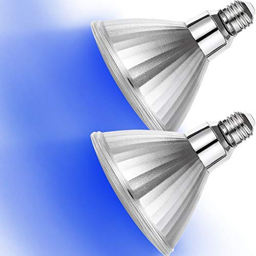 120W Incandescent Flood Light Bulbs in US - 9