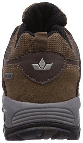 Low Lico Shoes Hiking Brown Santana Brown Rise Men Ox44fqv