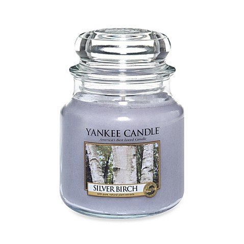 Yankee Candles Silver Birch Medium Jar Candle, Festive Scent