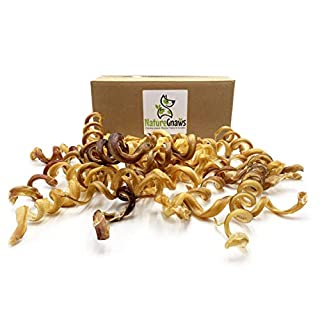 Nature Gnaws Bully Stick Springs for Dogs - Premium Natural Beef Bones - Long Lasting Spiral Dog Chew Treats - Rawhide Free - 7-10 Inch (25 Count) Bulk
