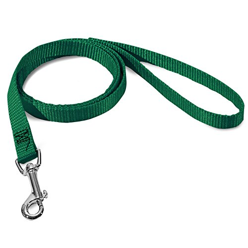 5/8in x 6ft Lead Dog Leash Green By Majestic Pet Products