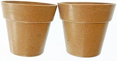 Set de 2 Mini Macetas de Perejil y Menta para Cultivar en Casa ...