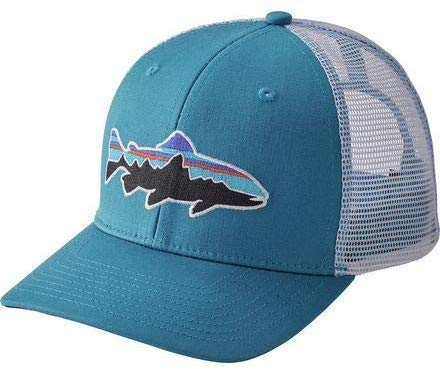 Patagonia Mens Fitz Roy Scope LoPro Trucker Mesh Cap Hat: Amazon ...