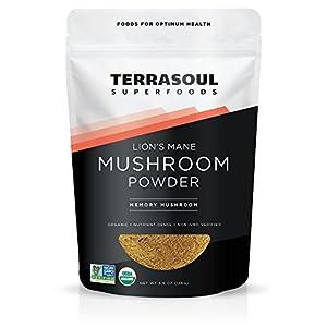 Gut Health Shop 41NlWgj%2BwjL._SS300_ Terrasoul Superfoods Organic Lion's Mane Mushroom Powder (4:1 Extract), 5.5 Ounces