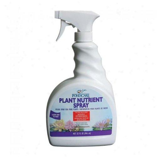 API Pondcare Plant Nutrient Spray Fertilizer, (32 Ounce Fertilizer)