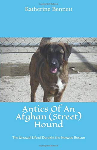 Antics Of An Afghan (Street) Hound: The Unusual Life Of Darakht The Nowzad Rescue ebook