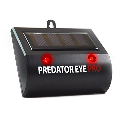 Aspectek Predator Eye PRO - Kick Stand Solar Powered Predator Light Deterrent Night Time Animal Repeller for Wild Animals Rodents, Cats, Dogs, Birds, Raccoon, Wolves, - Eye Cat Model