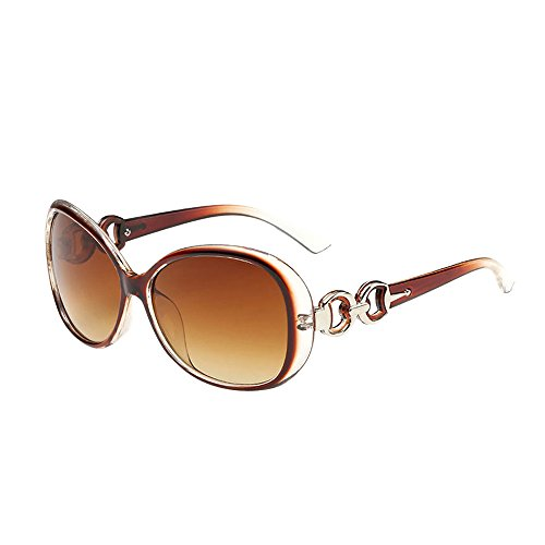 (LUCA Classic Stylish Designer Oval Polarized Sunglasses Double Ring Decoration Shades UV Glasses for Man for Women(F,One Size))