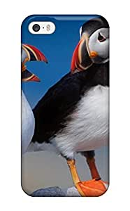 7420643K76556628 Special Design Back A Pair Of Puffins Phone Case Cover For Iphone 5/5s