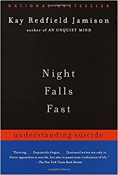 Image result for book night falls fast