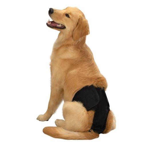 Clean Go Pet Male Pup Pants Xlg Black (Dog Pants Poochie)
