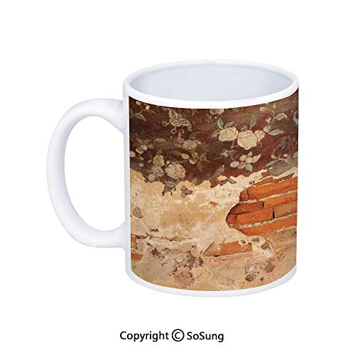 Antique Coffee Mug,Old Historical Floral Mural Painting on A Wall Concrete Bricks Rustic Decoration,Printed Ceramic Coffee Cup Water Tea Drinks Cup,Orange Beige