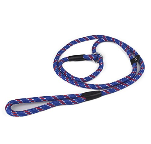 Zelta Adjustable Slip Lead Dog Training Leash 5-Ft. by 3/8-In. Width Nylon for Small Medium Dogs ()
