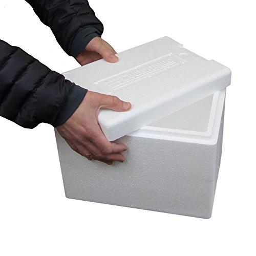 8 litros caja de poliestireno - Nevera - Caja de pescado - Qty 140 ...