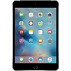 Apple iPad mini 4 (128GB, Wi-Fi + Cellular, Space Gray)