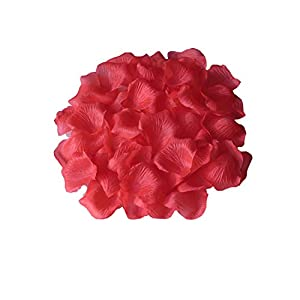 FANFLONA Artificial Flower Petals 1000 pcs Bulk Rose Confetti for Wedding Ceremony Table Centerpieces Aisle Runner Decor Flower Girl Scatter 28