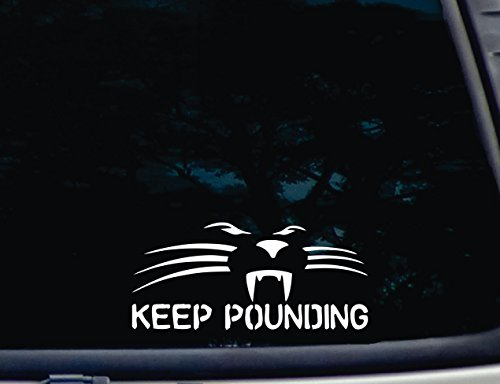 panthers window decal - 3