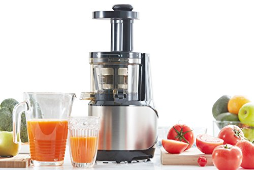 Tiluxury Slow Masticating Juicer, Juice Machine for Whole Fruit and Vegetable (Silver) Review