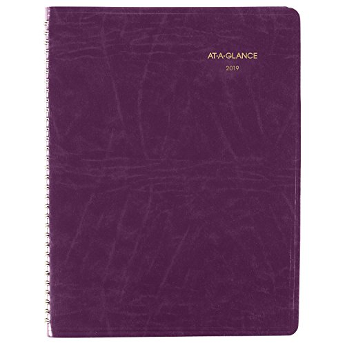 (AT-A-GLANCE 2019 Monthly Planner, DayMinder, 7