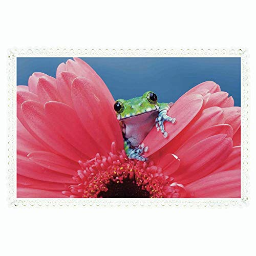 iPrint Animal Decor,Rectangle Polyester Linen Tablecloth/Cute Tiny Little Tree Frog on Gerbera Flower Magical Nature Moments Shoots Art Photo/for Dinner Kitchen Home Décor,60