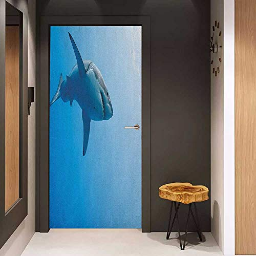 Onefzc Wood Door Sticker Shark Fish Swimming in The Ocean Underwater Beauty Tropical Island Water Nature Landscape Easy-to-Clean, Durable W30 x H80 Pale Blue ()