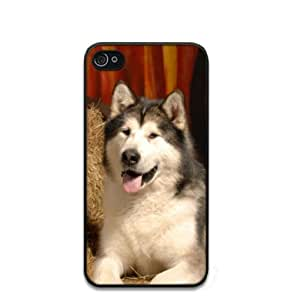 Details about Alaskan Malamute Dog Hard Case Clip on Back Cover for i-Phone 4 & 4S
