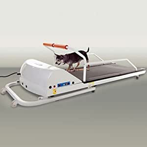 GoPet Petrun Pr710 Foldable Dog Treadmill Indoor Exercise / Fitness Kit - For Dogs Upto 44 Pounds