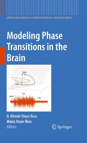 Modeling Phase Transitions in the Brain (Springer Series in Computational Neuroscience)