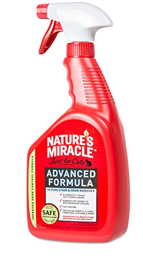 Natures Miracle Advanced Stain Remover