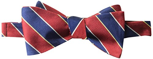 BUTTONED DOWN Men's Classic Silk Self-Tie Bow Tie, red/navy stripe, One Size