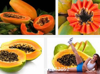 1Bag Papaya Seed 20 Chinese Fruit Seeds Flowering Quince Green Fresh Nutrient Food Flower (Flowering Quince Fruit)