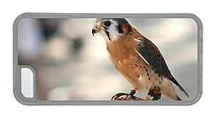 Customized iphone covers cute Predator a bird hunter close up TPU Transparent for Apple iPhone 5C