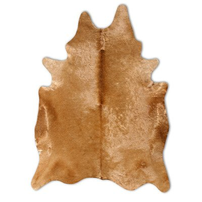 Natural Cowhide Camel Rug Rug Size: 6'' x 7'' by Pure Rugs