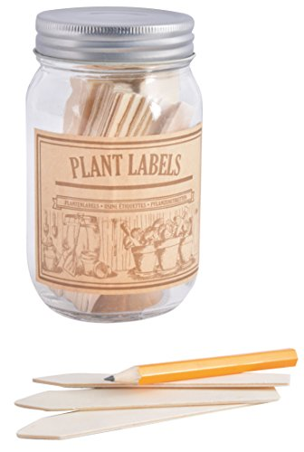 Esschert Design GT96 Wooden Plant Labels in Jar by Esschert Design