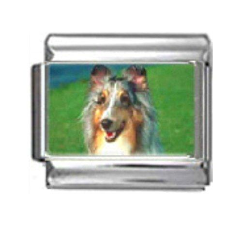 Stylysh Charms Collie Dog Photo Italian 9mm Link DG162