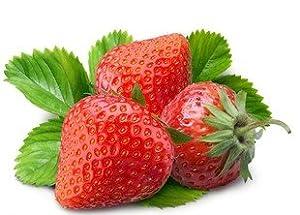 草莓种子_sprout 我要发芽 水果种子 盆栽草莓种子 洋莓 地莓 地果 红莓 草莓籽