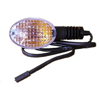 2008-2012 Kawasaki Ninja 250 EX250 Right Front Turn Signal 23037-0116 Original OEM Indicator Blinker Light: Automotive