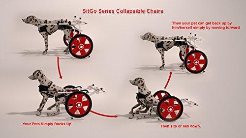 (Best Friend Mobility SitGo Dog Pet Wheelchair Revolution)