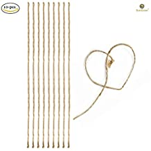 """10 Self-dissolving Natural Driftwood Strings (20"""") --- Ideal Solution for Tying Java Fern, Moss, Anubias - Blends Naturally with Cholla, Driftwood - Must have cord for intricate, delicate Aquascaping"""