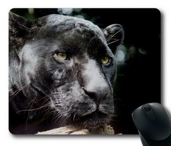 Panthers ferocious photograph Office Computer Mouse (Panthers Photograph)