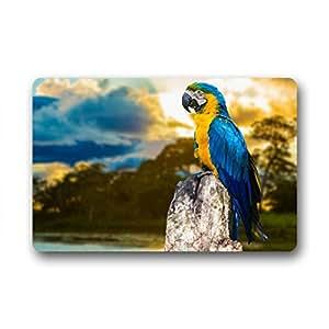 "Personalizado Parrot pintura casa Welcome Felpudo al aire libre interior 60cm x 40cm (23.6x15.7"")"