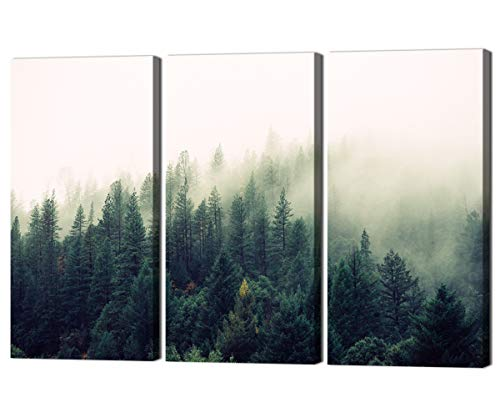 (Home Decor Wall Art for Living Room Bedroom Kitchen,Premium Quality Modern Giclee 3 Pieces Pictures Hite Smoke Swirls Around The Green Jungle Prints Canvas Painting, Wth Wooden Framed (42''W x 28''H))