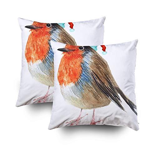 Bird 18x18 2Pack Pillow Cases,Standard Pillow Case,TOMWISH Zippered Decorative Throw Cotton Pillow Case Cushion Cover for Home Decor animal art avian background beak beautiful bird bright cap card chr