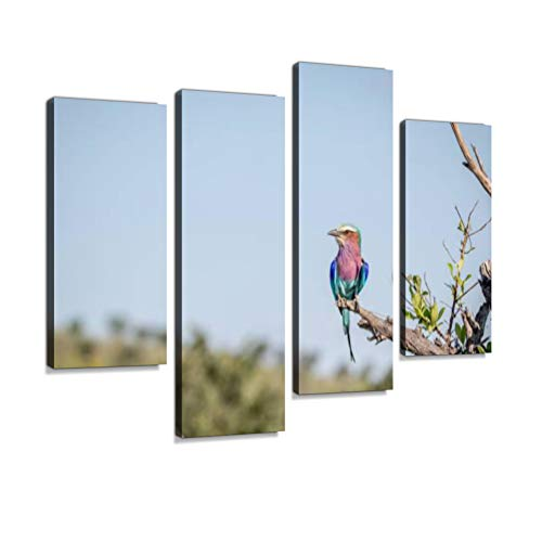 - Lilac-Breasted Roller Sitting on a Branch. Canvas Wall Art Hanging Paintings Modern Artwork Abstract Picture Prints Home Decoration Gift Unique Designed Framed 4 Panel
