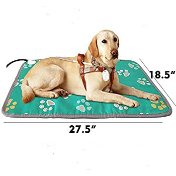 Amazon.com : dibikou Large Dog Heating Pad Electric Heat