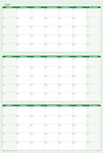 Day Erasable - Earth Green 90-Day / 3-Month Quarterly Vertical Dry/Wet-Erasable Wall Calendar 36 in. x 24 in.